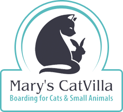 Mary's CatVilla Cattery