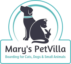 Mary's Petvilla Boarding for Cats, Dogs & Small Animals